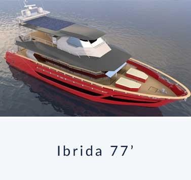ibrida77-d
