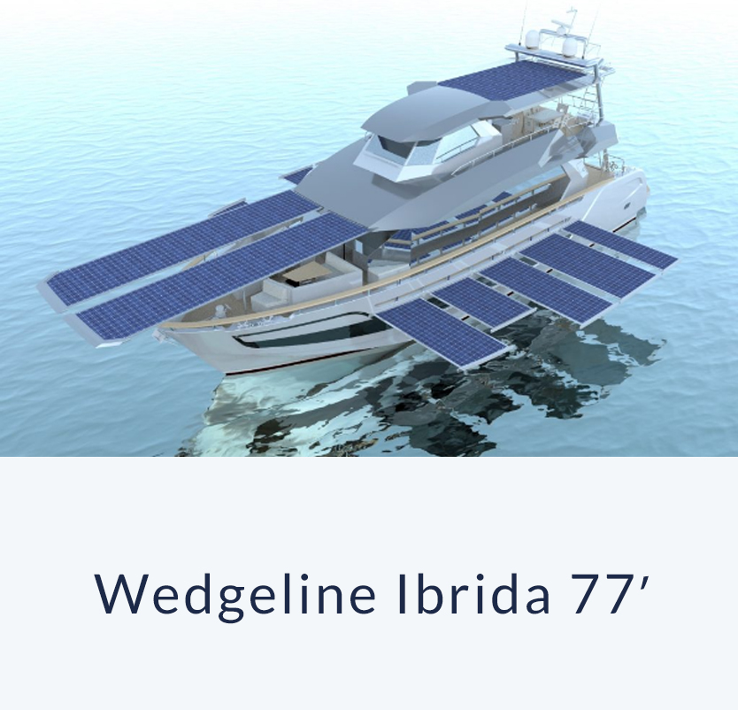 77 ibrida